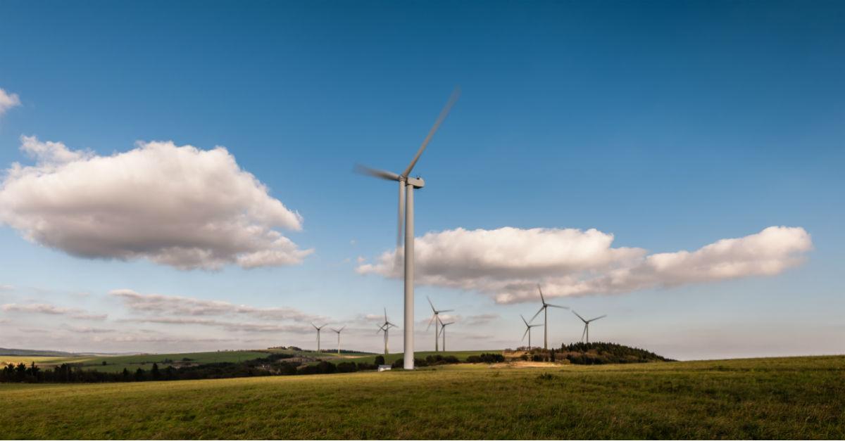 وضعیت جهانی استفاده از انرژی باد - انرژی باد، انرژی طبیعی پایدار